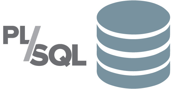 When to PL/SQL over Java Code?